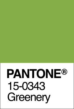 Pantone Colour Greenery